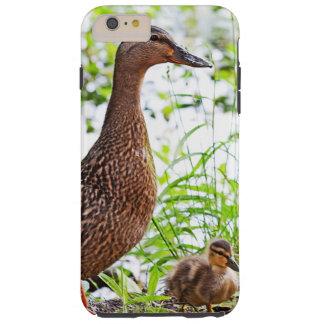 Pato silvestre y anadones de Shirley Taylor Funda Para iPhone 6 Plus Tough