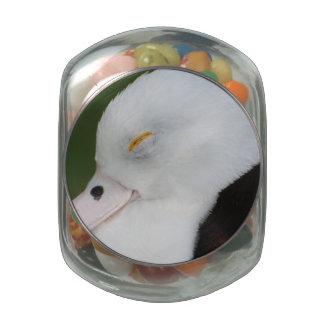 Pato soñoliento jarrones cristal