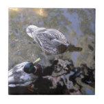 Pato (varón y hembra) azulejos ceramicos