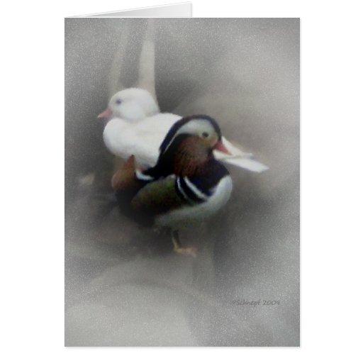 Pato y amigo de mandarín… tarjeton