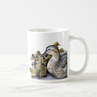 Pato y anadones salvajes de la madre taza