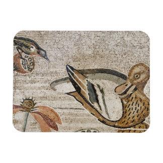 Pato y pájaro, mosaico del Nilo, casa del fauno Iman De Vinilo