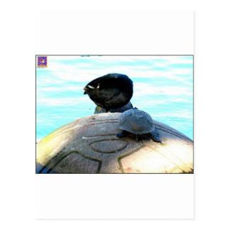 Pato y tortuga postales