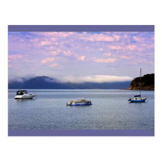 patonga mist 100 mm postcard