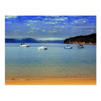 patonga mist postcard