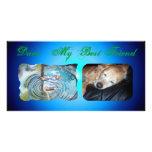 Patos 1 tarjetas fotograficas personalizadas