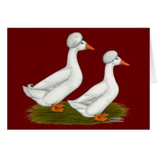 Patos:  Blanco Crested Tarjeta Pequeña