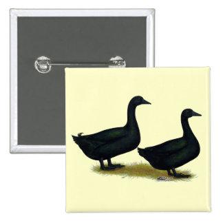 Patos:  Cayugas negros Pin Cuadrada 5 Cm