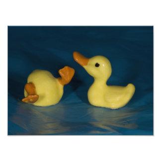 Patos de cerámica impresion fotografica