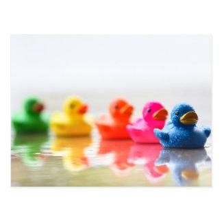 Patos de goma coloridos postales