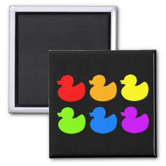Patos de goma del arco iris en negro imán de frigorífico