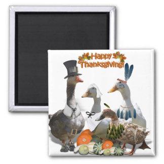 Patos de la acción de gracias imán cuadrado