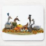 Patos de la acción de gracias - peregrinos y indio tapete de raton