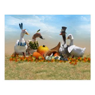 Patos de la acción de gracias - peregrinos y postal