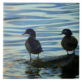 Patos de madera en la puesta del sol azulejo cuadrado grande