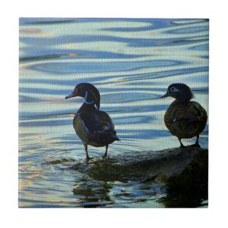 Patos de madera en la puesta del sol azulejo cuadrado pequeño