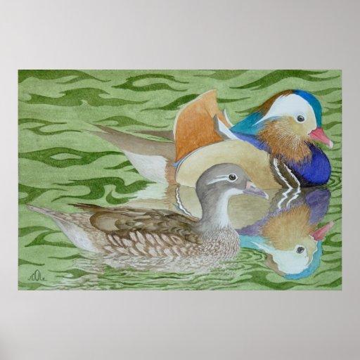 Patos de mandarín en un lago póster