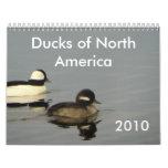 Patos de Norteamérica 2010 Calendario