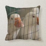 Patos de Pekin en imagen de la jaula Cojines