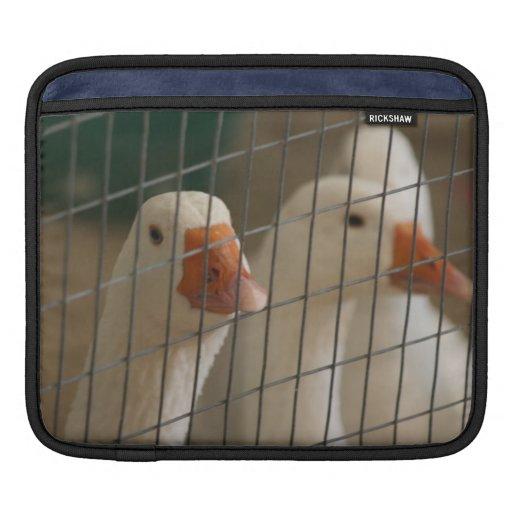 Patos de Pekin en imagen de la jaula Fundas Para iPads