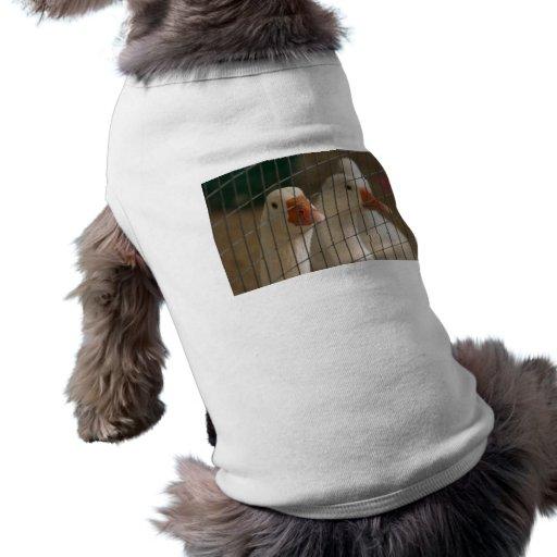 Patos de Pekin en imagen de la jaula Playera Sin Mangas Para Perro