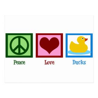 Patos del amor de la paz postales