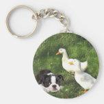 Patos del llavero de Boston Terrier