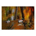 Patos del pato silvestre en colores del otoño tarjeta
