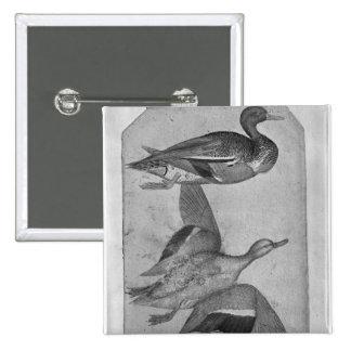 Patos, el álbum de Vallardi Pin Cuadrada 5 Cm
