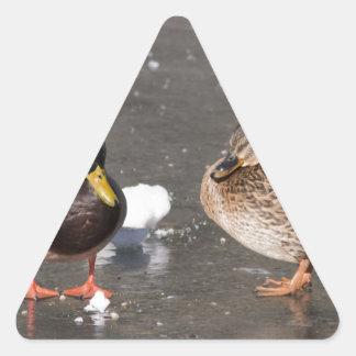 """""""patos en el hielo negro """" pegatina triangular"""