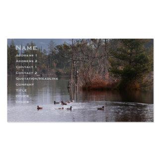 Patos en el lago empire tarjetas de visita