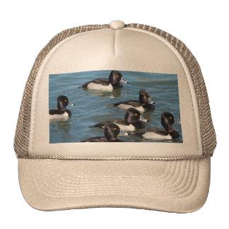 """""""Patos en gorra de un lago azul"""" para el papá"""