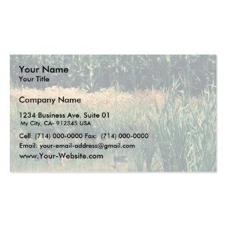 Patos en humedal tarjetas de visita