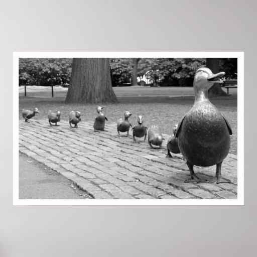 Patos en la impresión del jardín público poster