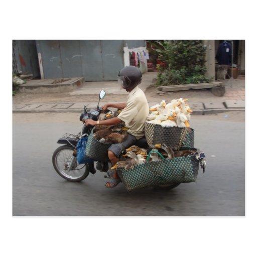 Patos en moto-Vietnam Postal