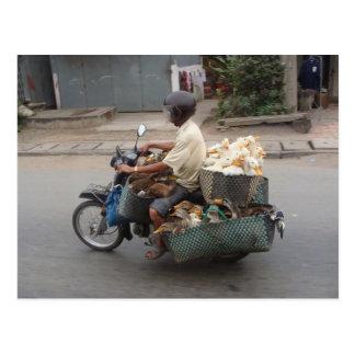 Patos en moto-Vietnam Tarjetas Postales