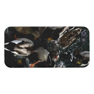 patos en su IPhone iPhone 5 Carcasa