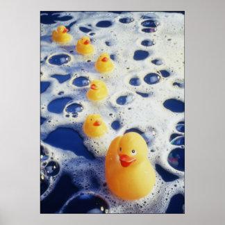 Patos en una fila póster