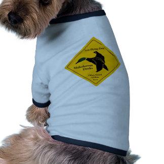Patos malolientes camisetas de mascota