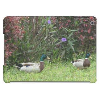 Patos masculinos del pato silvestre carcasa para iPad air