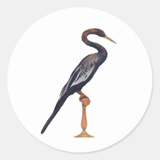 Patos, pájaro de la serpiente, ave del paraíso pegatina redonda