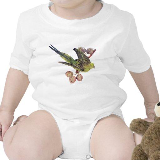 Patos, pájaro de la serpiente, ave del paraíso trajes de bebé