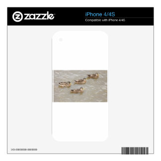 Patos que nadan iPhone 4S skin