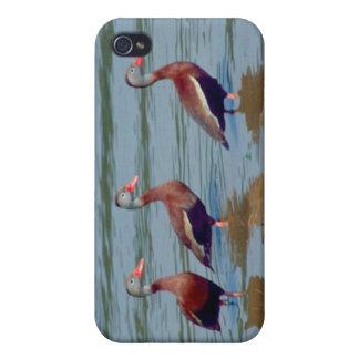 Patos que silban Negro-Hinchados iPhone 4 Carcasas