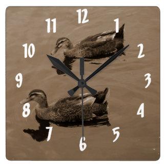 Patos Relojes De Pared