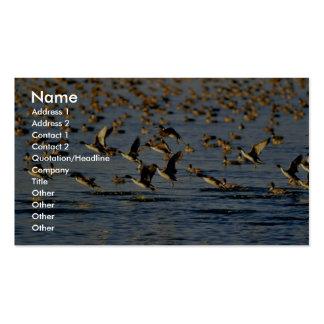 Patos rojizos tarjetas de visita