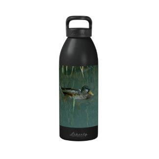 Patos salvajes en las cañas en el lago Balatón Botellas De Agua Reutilizables