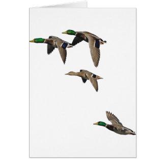 Patos silvestres de la caza del pato en vuelo felicitacion