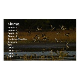 Patos silvestres que suben del agua plantillas de tarjetas personales