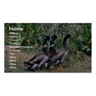 Patos silvestres tarjeta personal